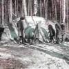 OVNI estrellado en Rusia en 1968