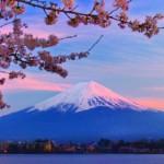 Aokigahara, el bosque maldito