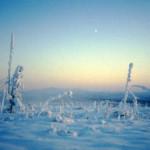 El valle de la muerte en Siberia
